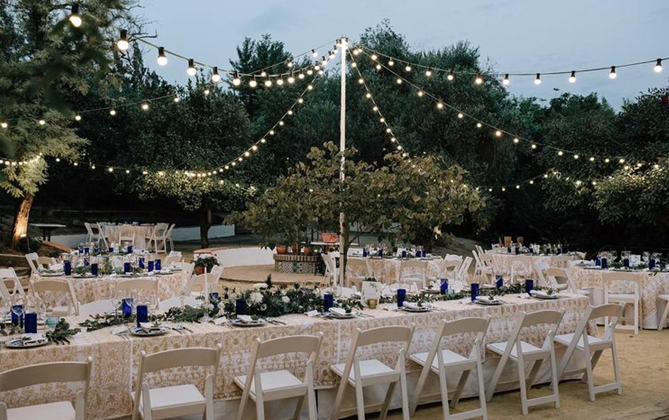 Papelería de boda mediterránea con olivos y eucaliptos en acuarela